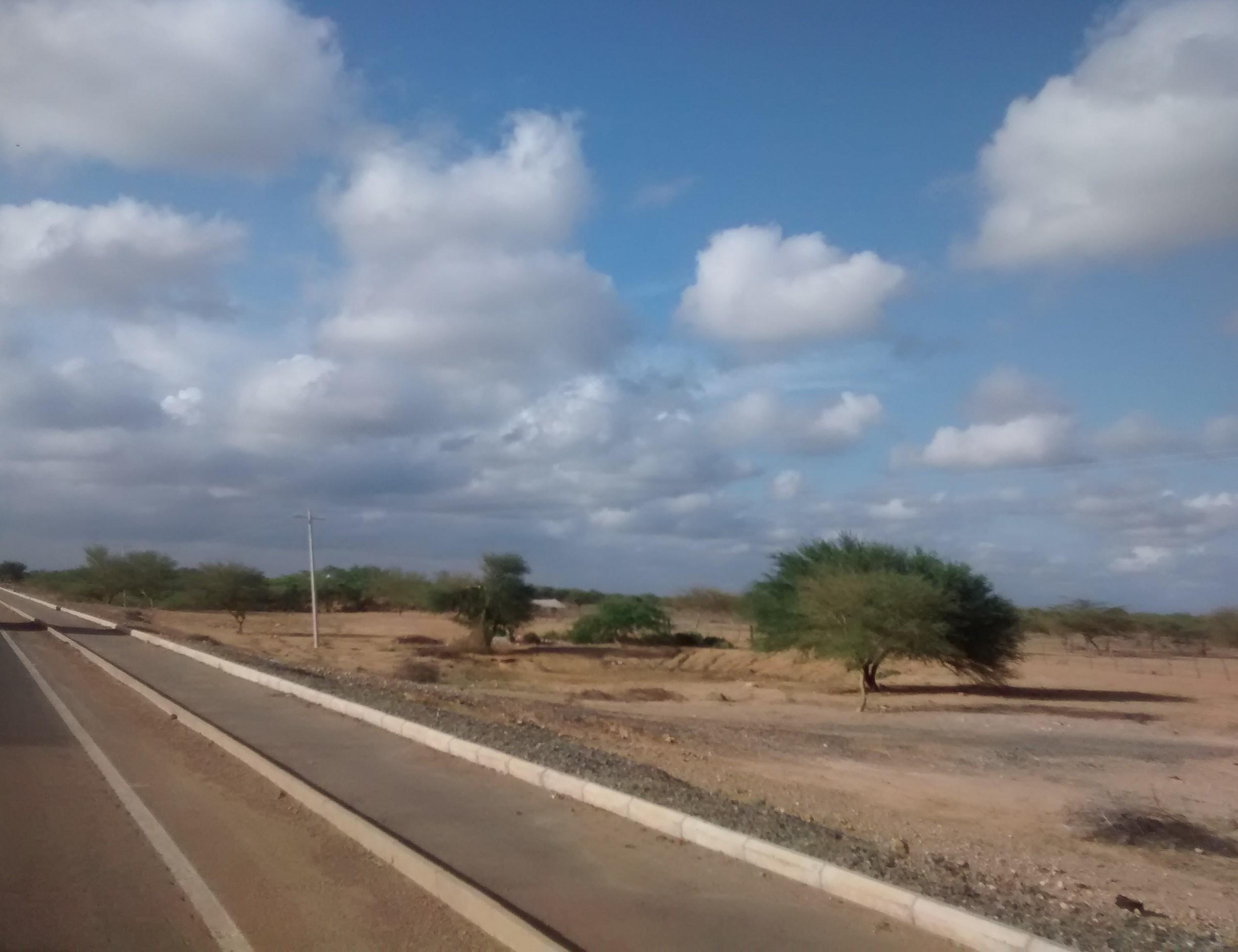 Typical landscape in the Alta Guajira. Photo: D.A. Gómez-Latorre (2014)
