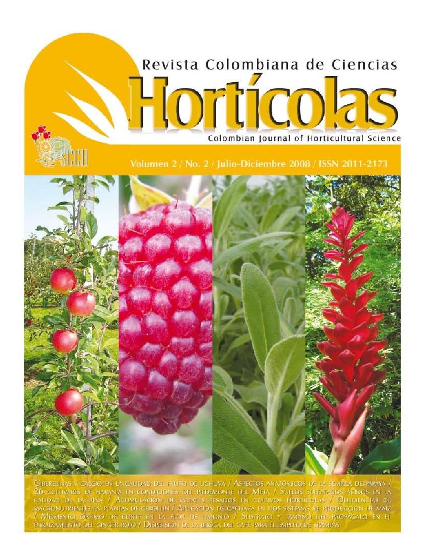 Aspectos anatómicos de la semilla de papaya (Carica papaya L ...
